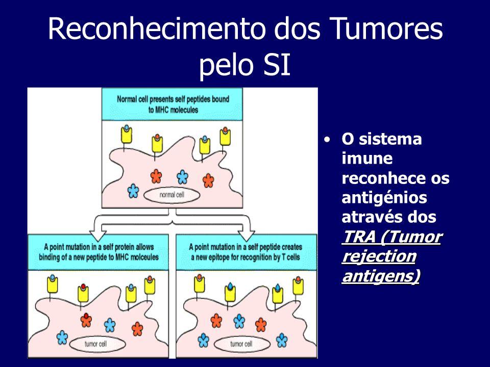 Reconhecimento dos Tumores pelo SI