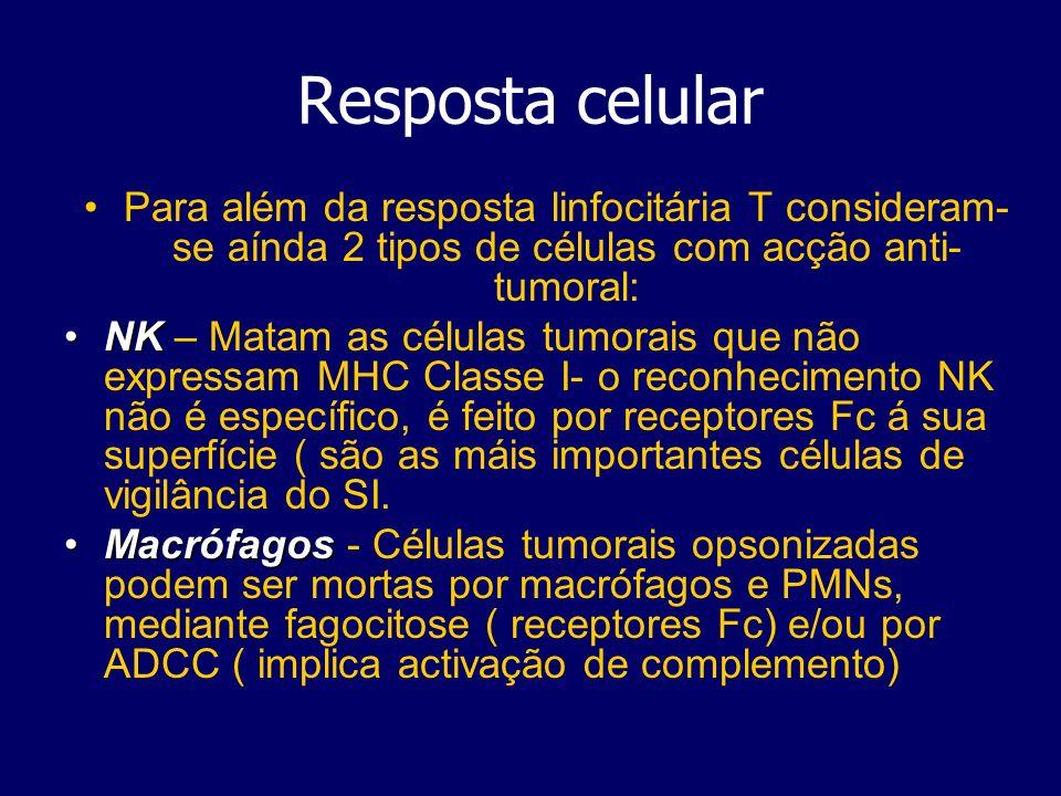Resposta celular Para além da resposta linfocitária T consideram-se aínda 2 tipos de células com acção anti-tumoral: