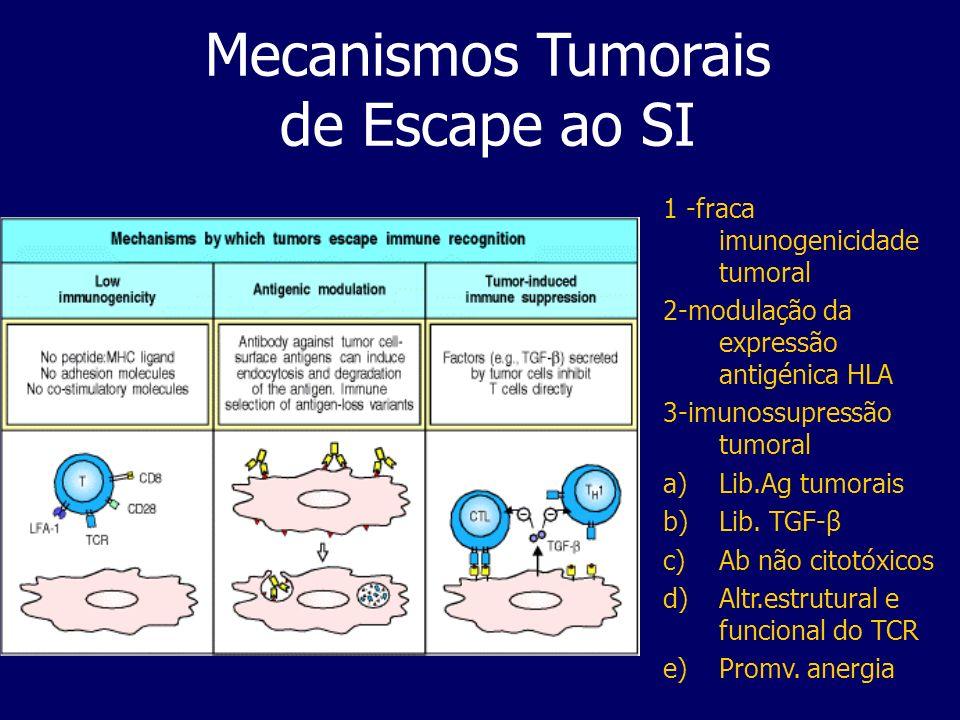 Mecanismos Tumorais de Escape ao SI