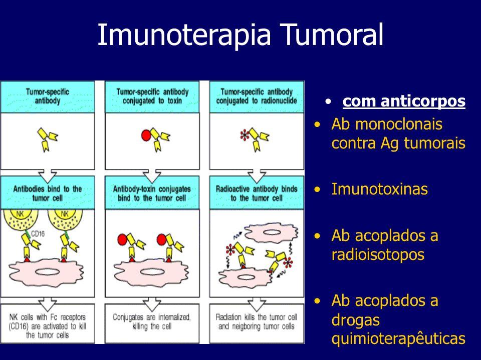 Imunoterapia Tumoral com anticorpos Ab monoclonais contra Ag tumorais