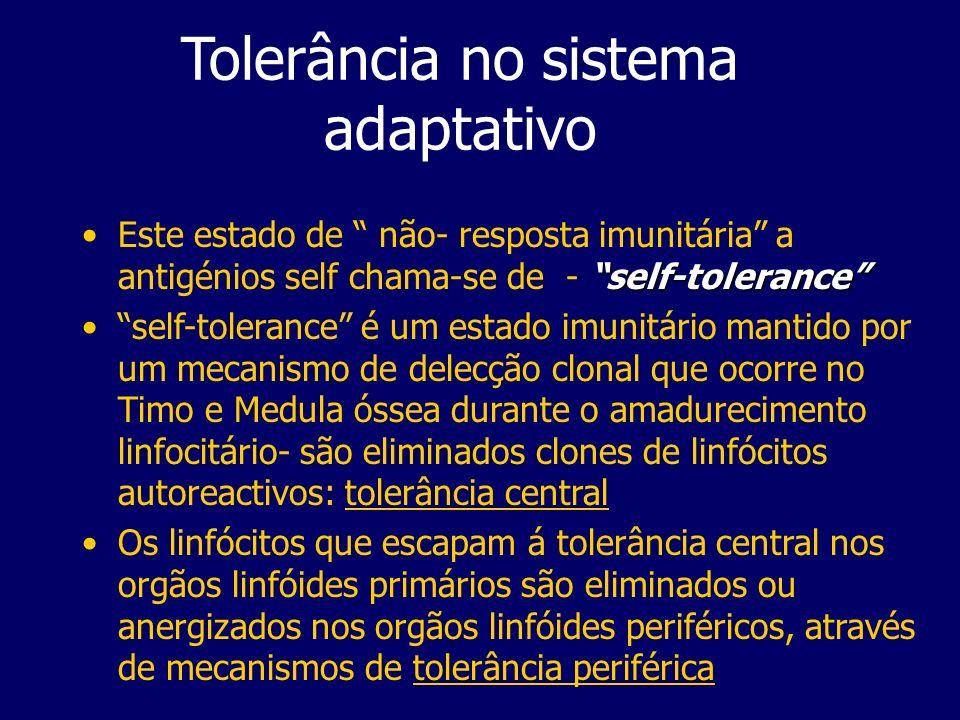 Tolerância no sistema adaptativo