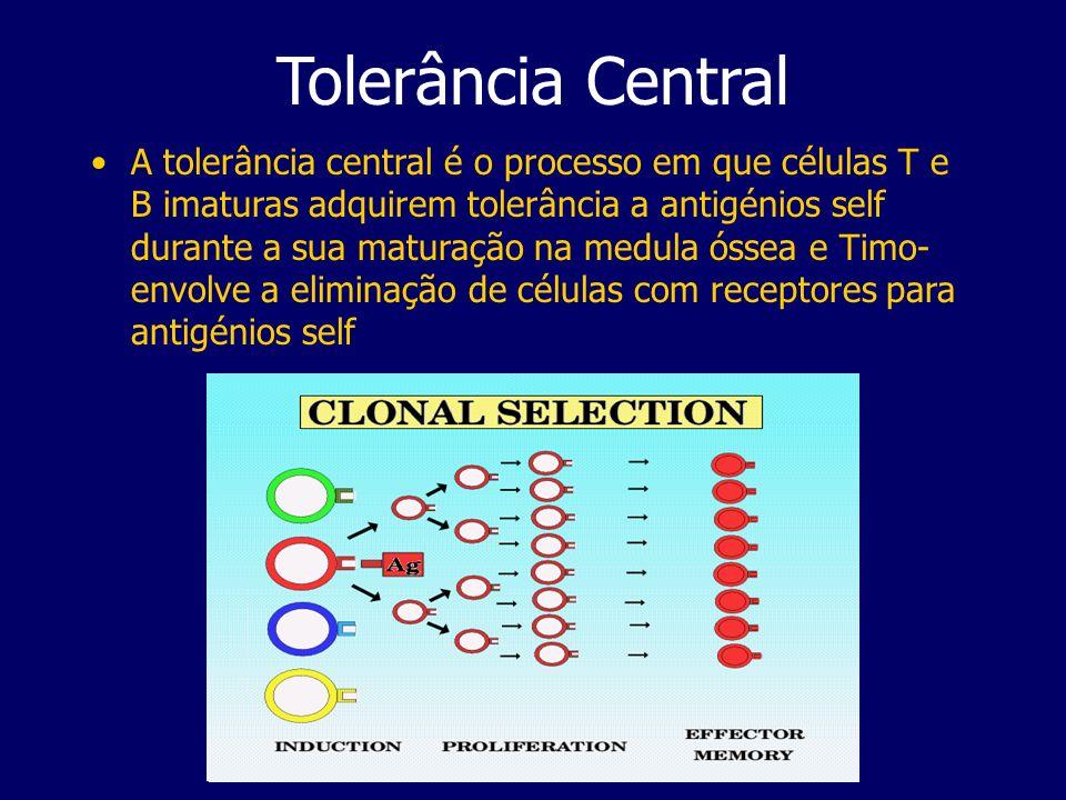 Tolerância Central