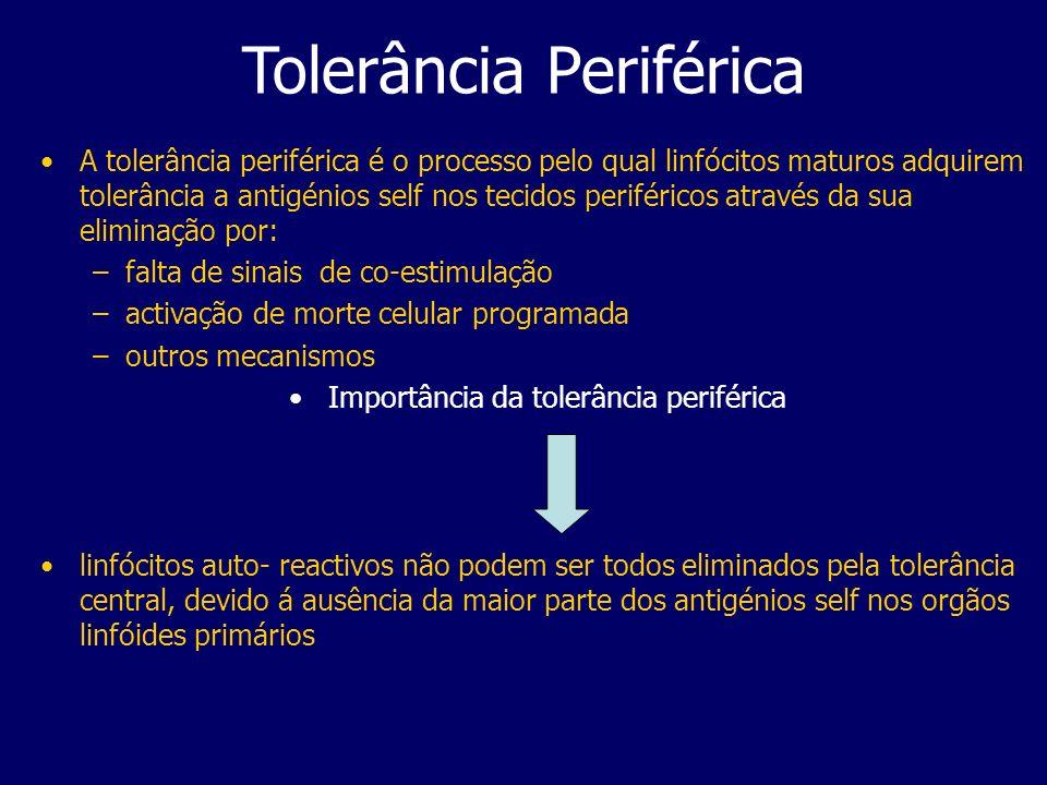 Tolerância Periférica