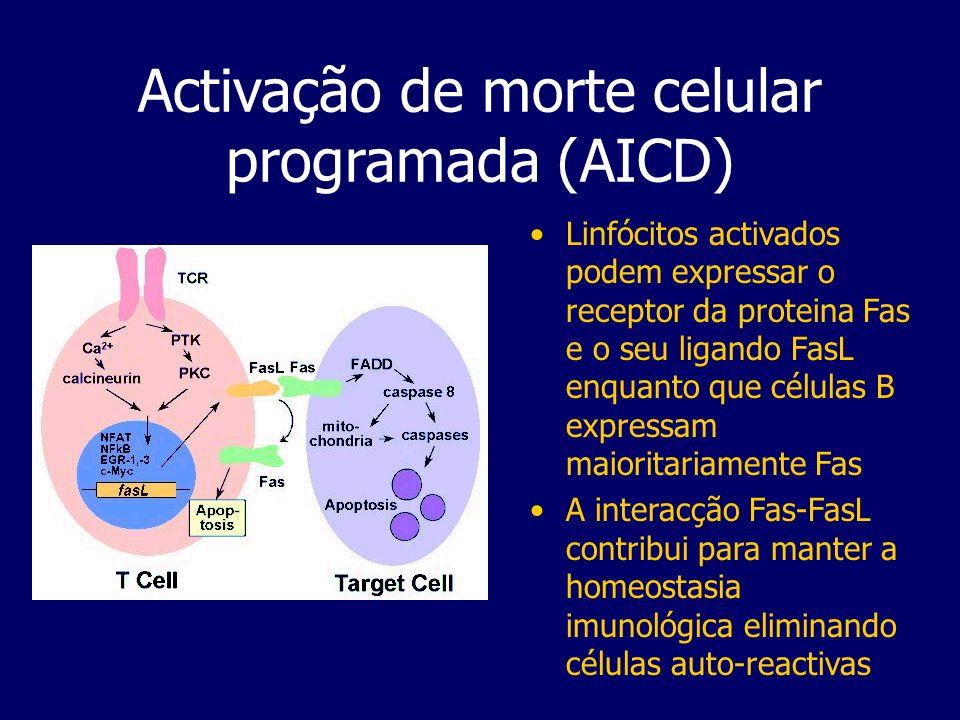 Activação de morte celular programada (AICD)