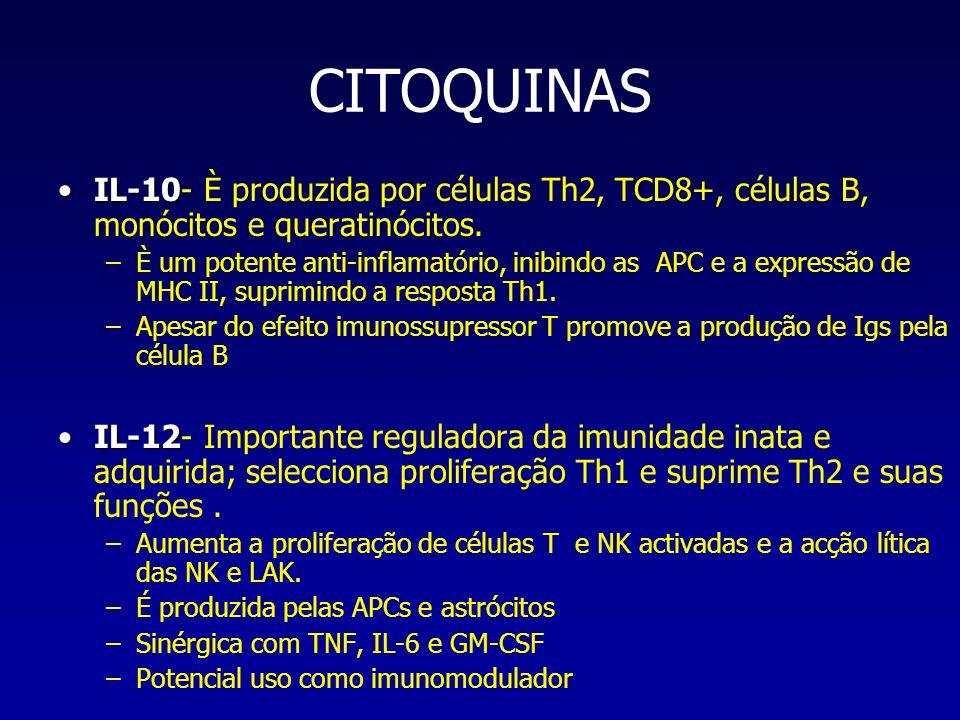CITOQUINAS IL-10- È produzida por células Th2, TCD8+, células B, monócitos e queratinócitos.
