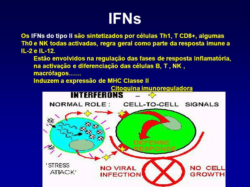Citoquina imunoreguladora