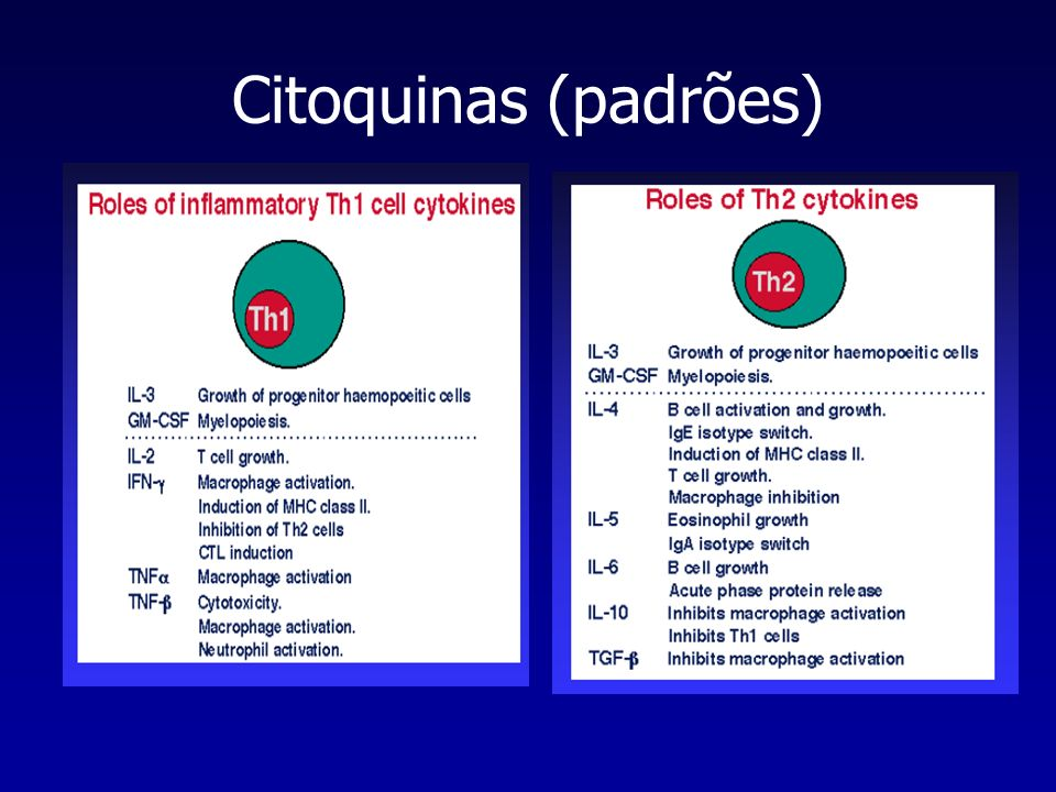 Citoquinas (padrões)