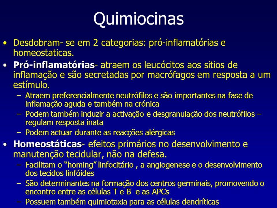 Quimiocinas Desdobram- se em 2 categorias: pró-inflamatórias e homeostaticas.