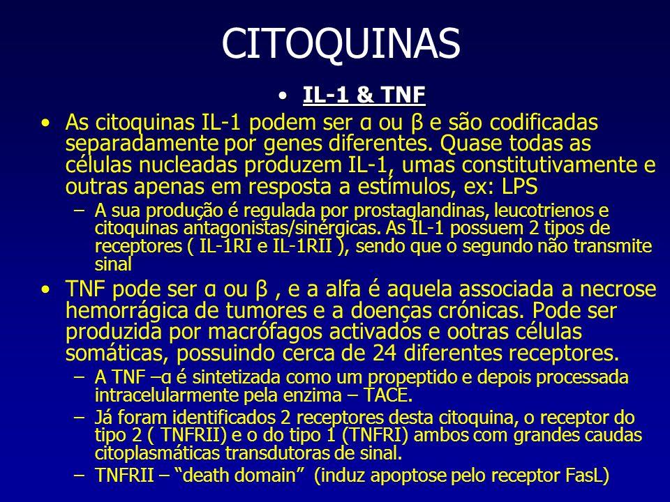 CITOQUINAS IL-1 & TNF.