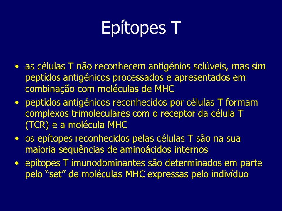 Epítopes T