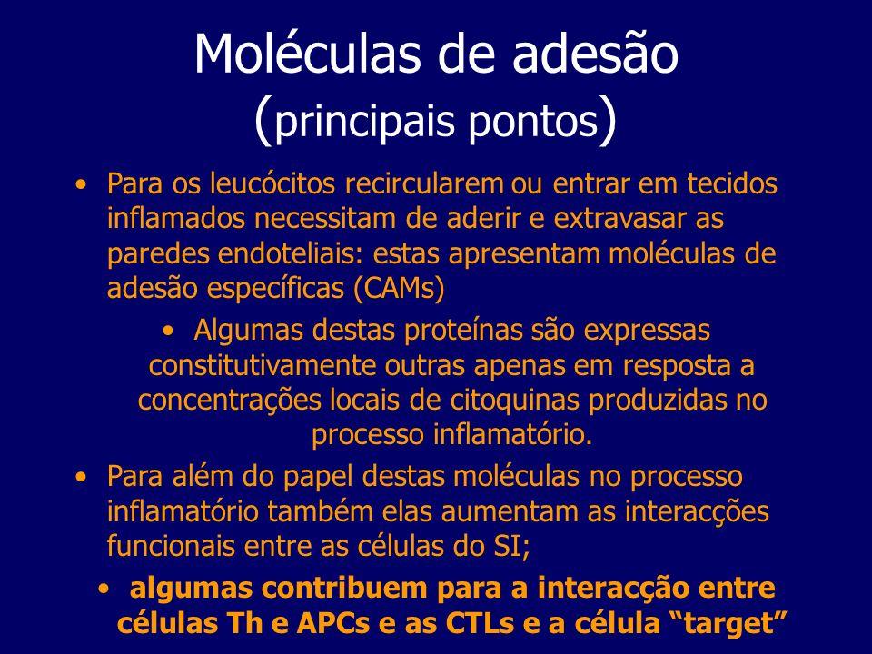Moléculas de adesão (principais pontos)