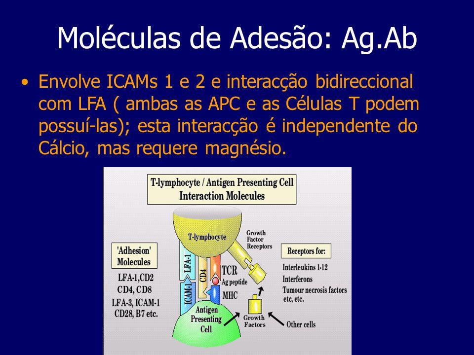 Moléculas de Adesão: Ag.Ab