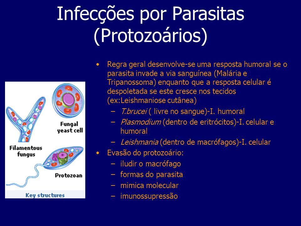 Infecções por Parasitas (Protozoários)