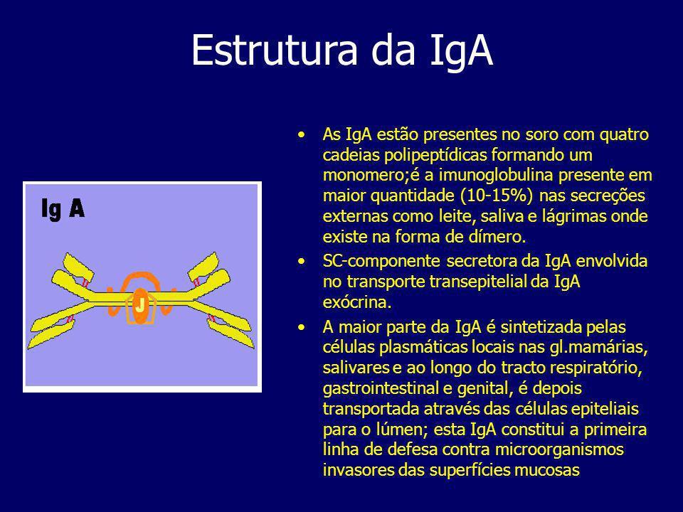 Estrutura da IgA