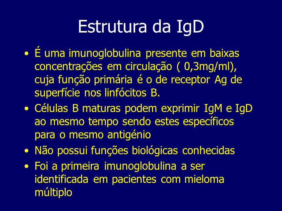 Estrutura da IgD