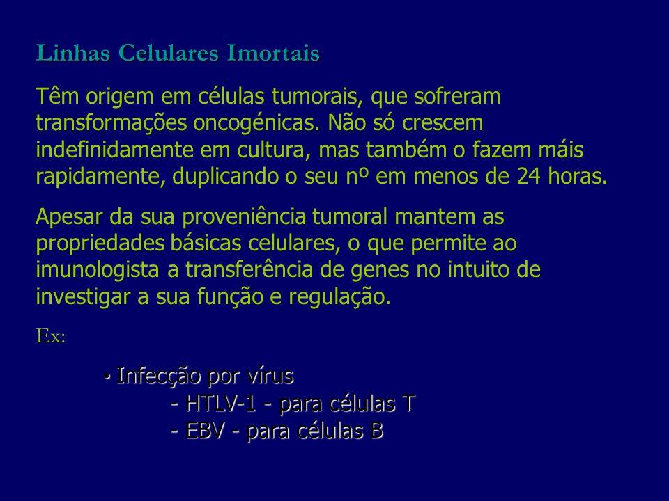 Linhas Celulares Imortais