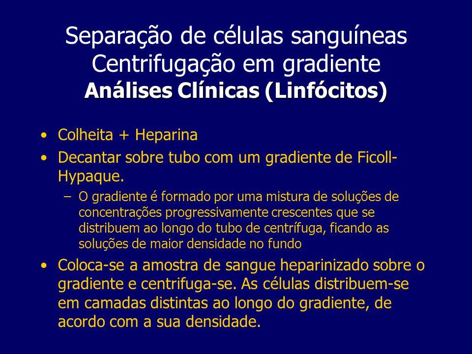 Separação de células sanguíneas Centrifugação em gradiente Análises Clínicas (Linfócitos)