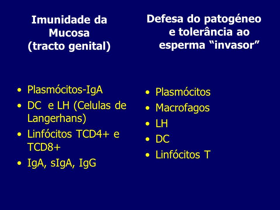 Imunidade da Mucosa (tracto genital)