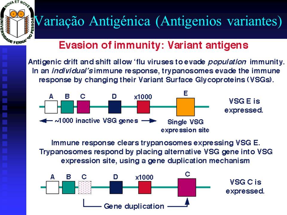 Variação Antigénica (Antigenios variantes)