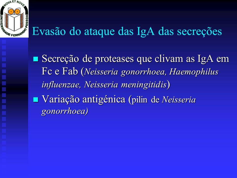 Evasão do ataque das IgA das secreções