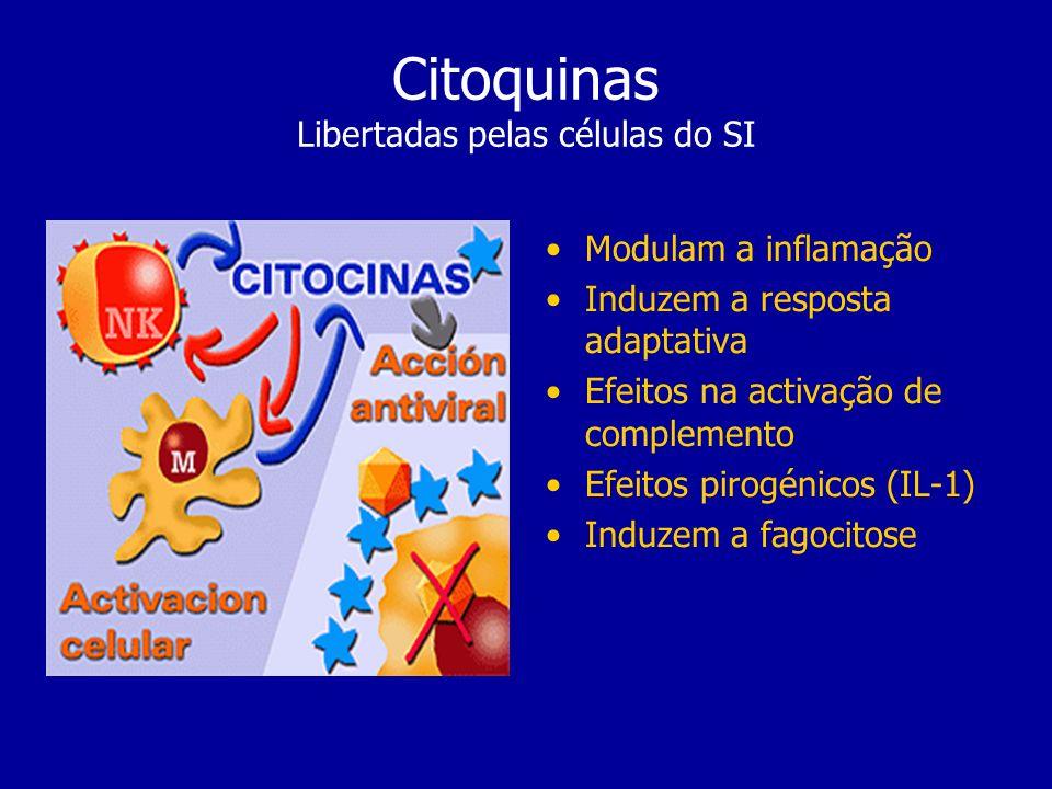 Citoquinas Libertadas pelas células do SI