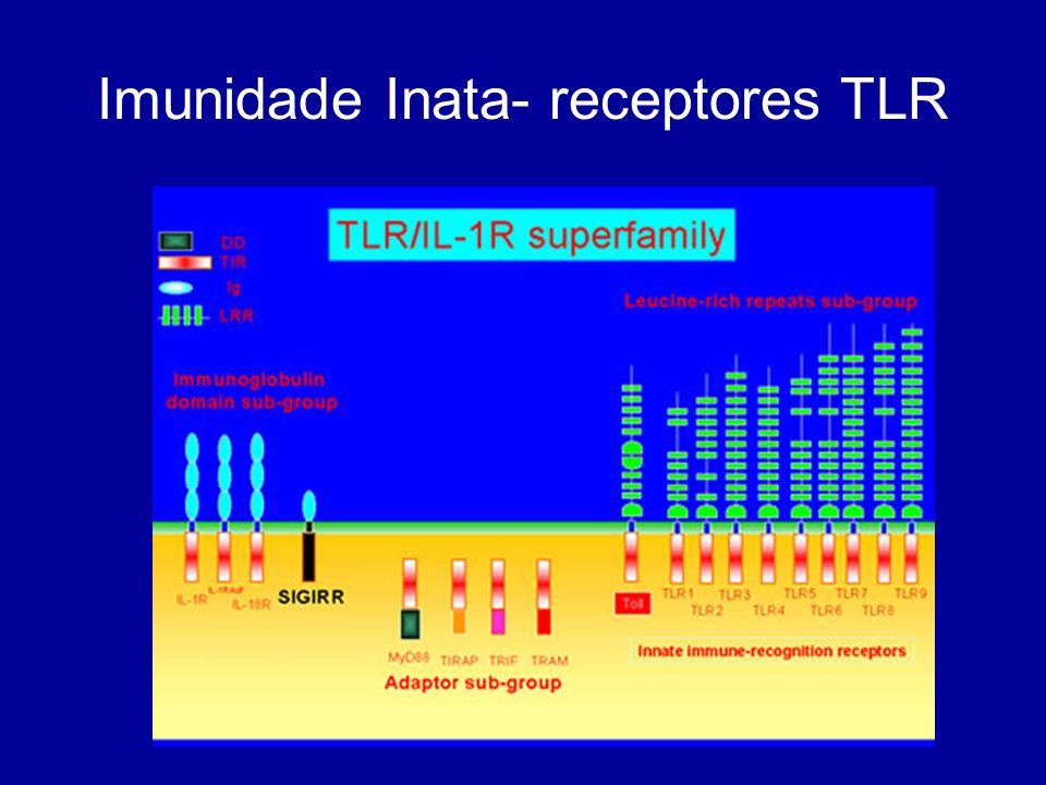 Imunidade Inata- receptores TLR