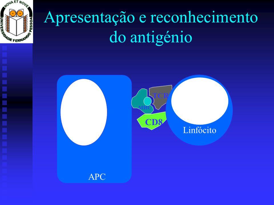 Apresentação e reconhecimento do antigénio