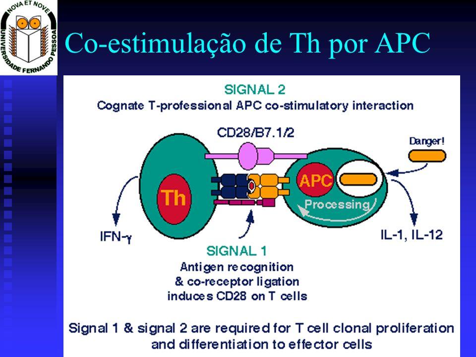 Co-estimulação de Th por APC