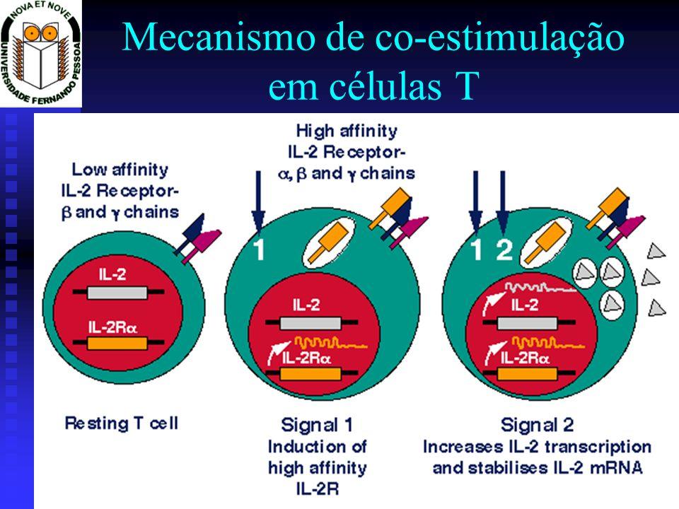 Mecanismo de co-estimulação em células T