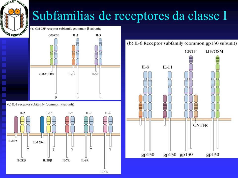Subfamilias de receptores da classe I