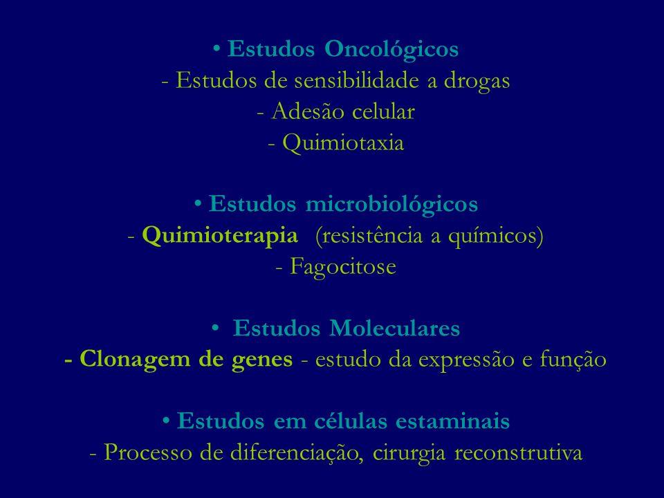 Estudos microbiológicos