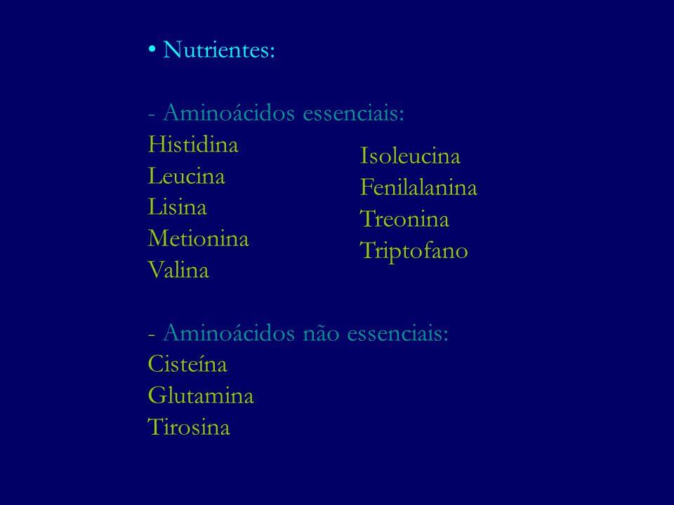 Nutrientes: - Aminoácidos essenciais: Histidina. Leucina. Lisina. Metionina. Valina. - Aminoácidos não essenciais: