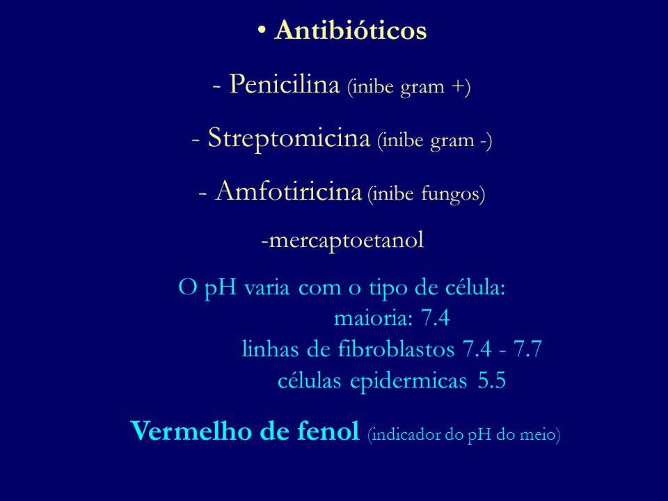 - Penicilina (inibe gram +) Streptomicina (inibe gram -)