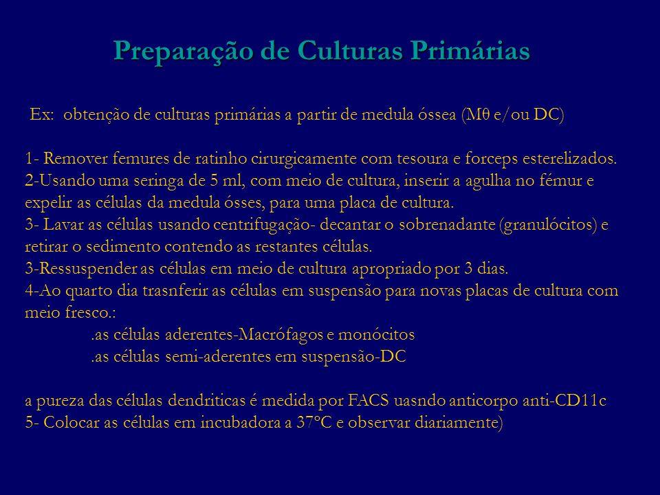 Preparação de Culturas Primárias