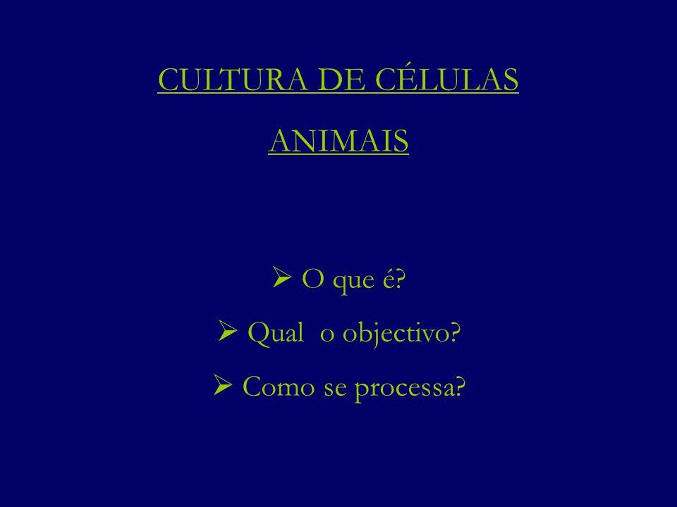 CULTURA DE CÉLULAS ANIMAIS  O que é  Qual o objectivo