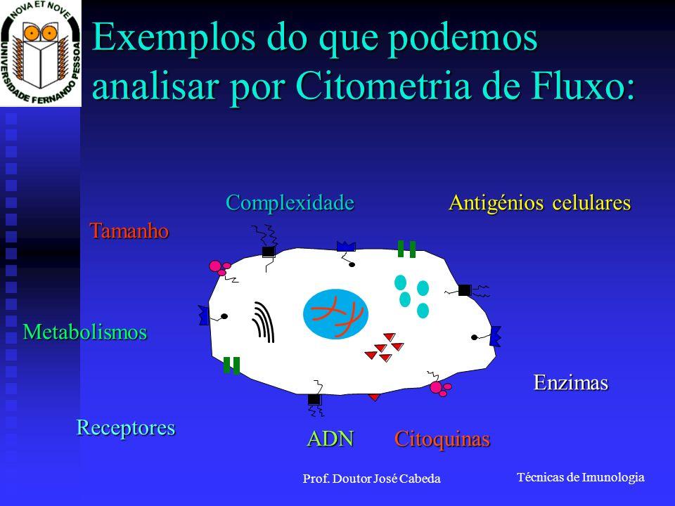 Exemplos do que podemos analisar por Citometria de Fluxo: