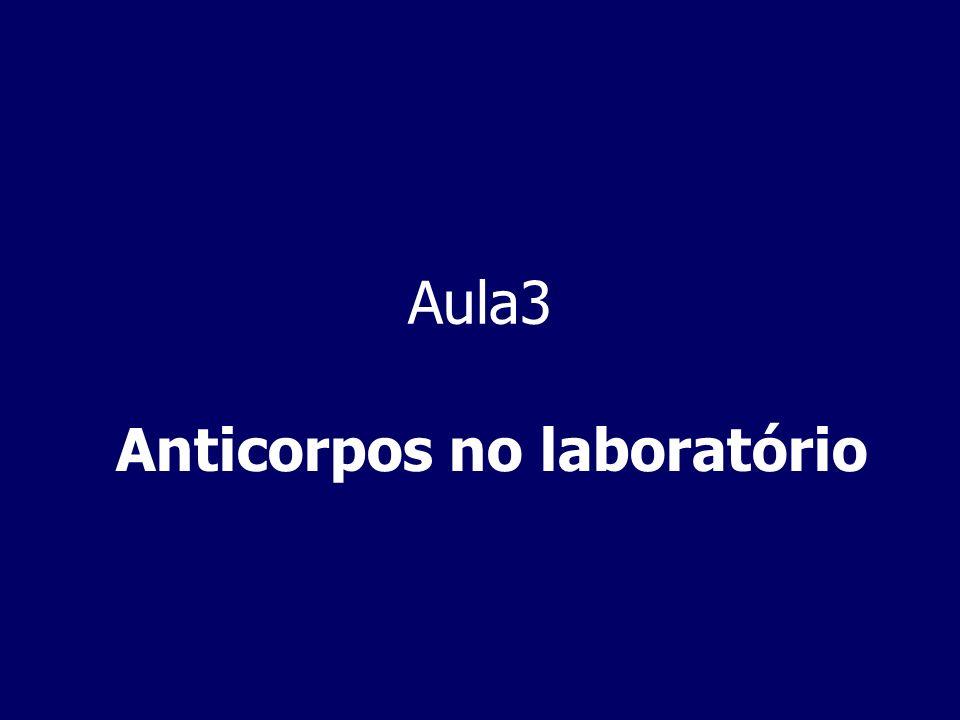 Anticorpos no laboratório