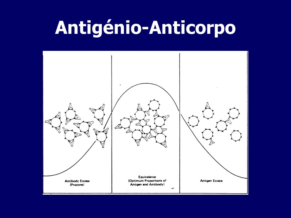 Antigénio-Anticorpo
