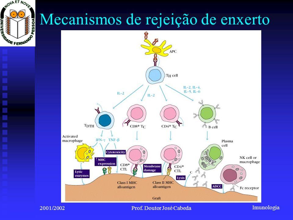 Mecanismos de rejeição de enxerto