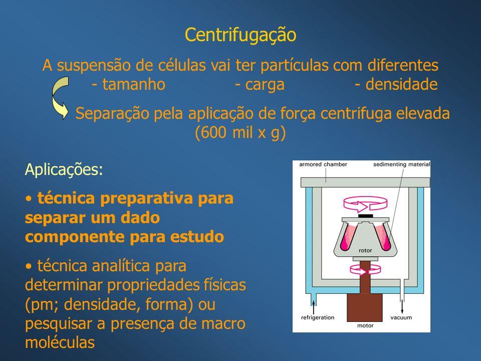Separação pela aplicação de força centrifuga elevada (600 mil x g)