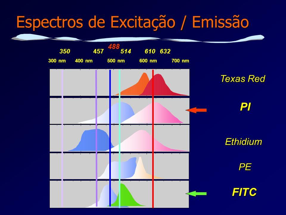Espectros de Excitação / Emissão