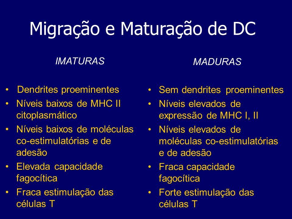 Migração e Maturação de DC