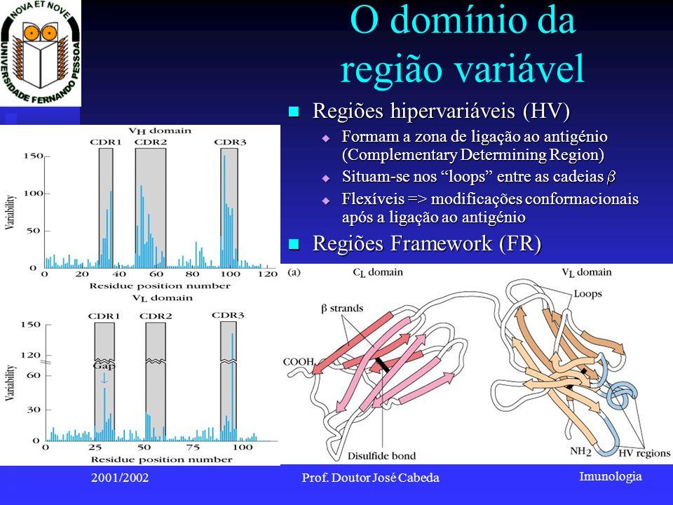 O domínio da região variável