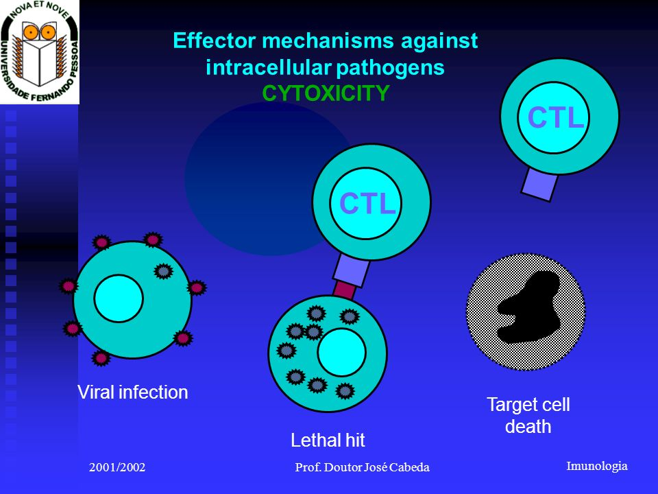 Effector mechanisms against intracellular pathogens