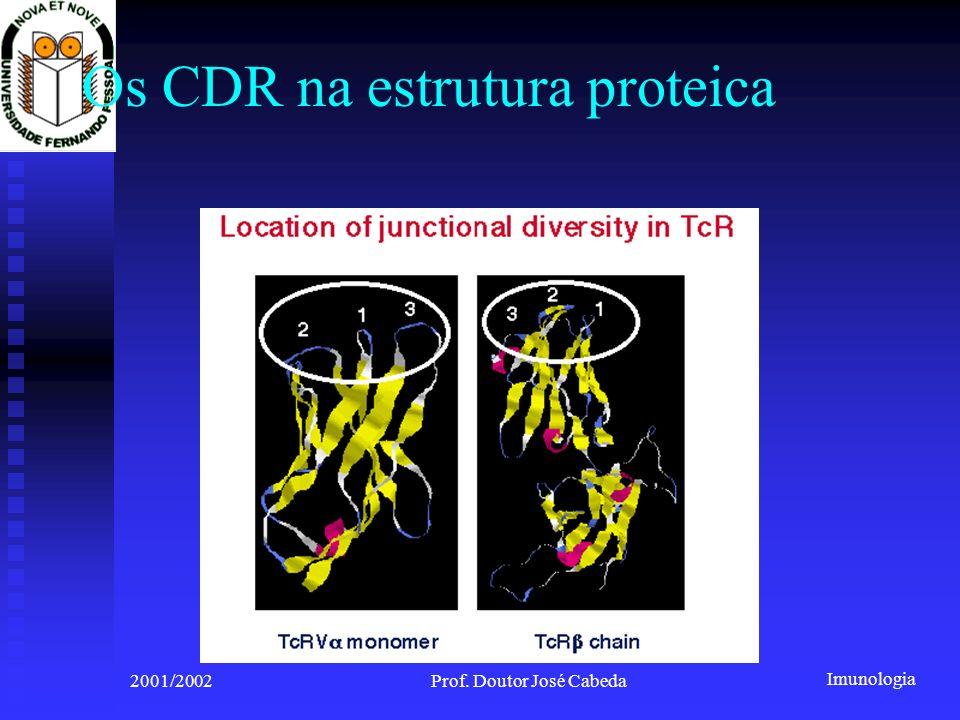 Os CDR na estrutura proteica