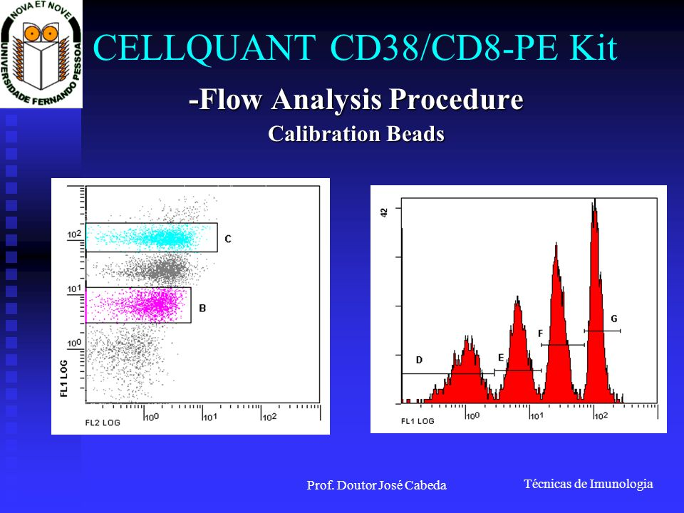 CELLQUANT CD38/CD8-PE Kit