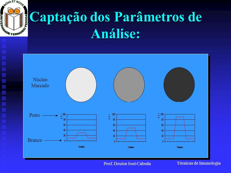 Captação dos Parâmetros de Análise: