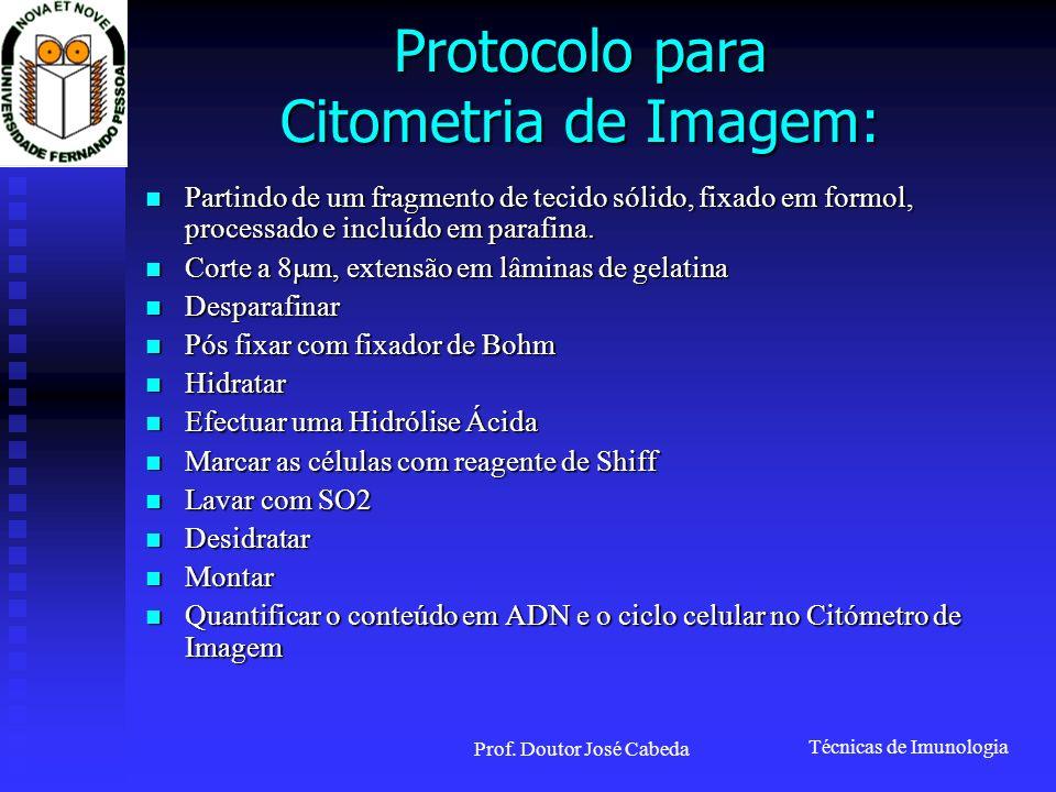 Protocolo para Citometria de Imagem: