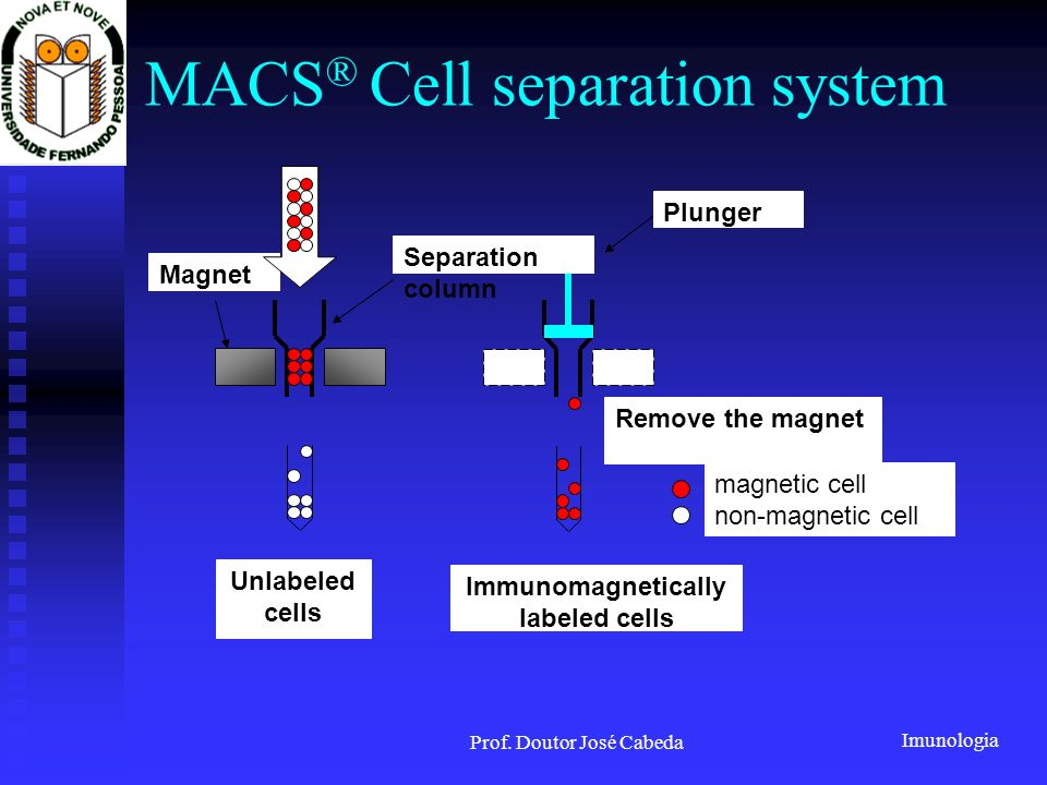 MACS® Cell separation system