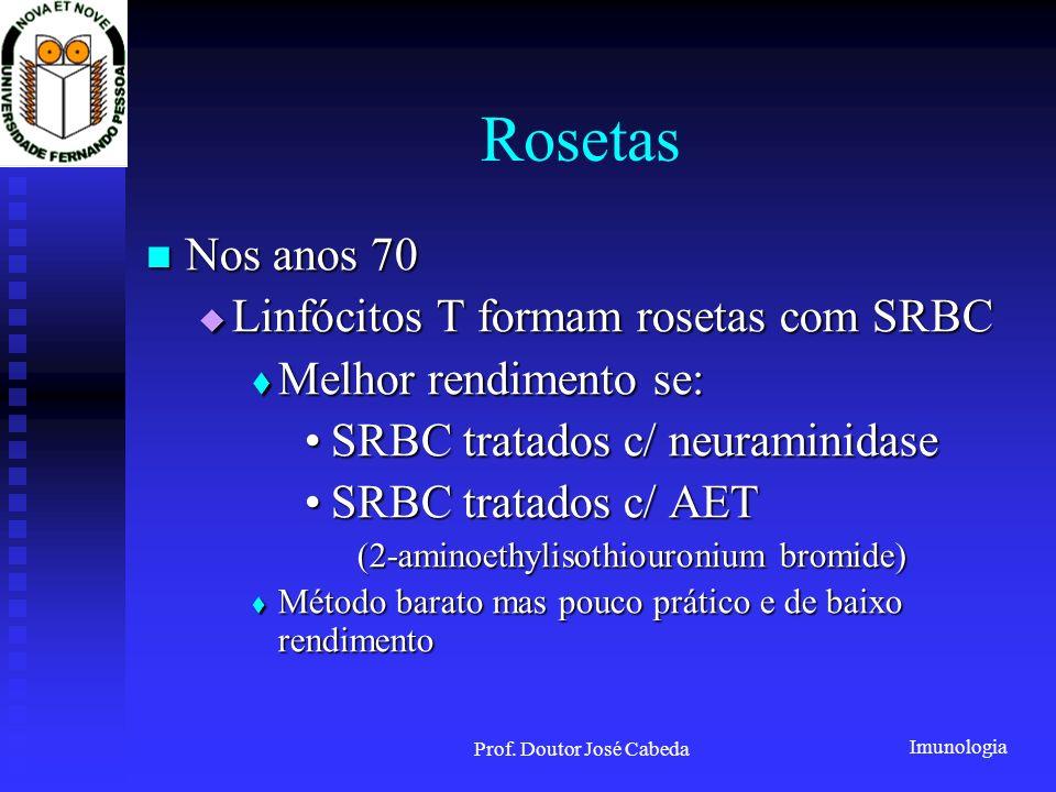 Prof. Doutor José Cabeda